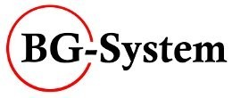 BG System Logo